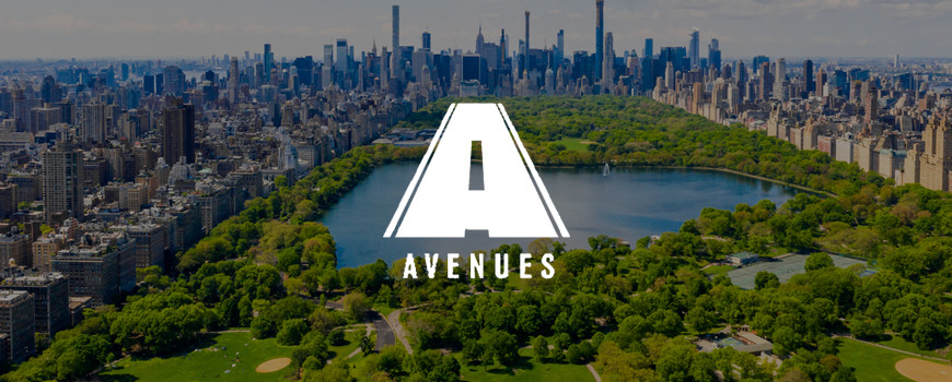 Case Study Avenues NYC
