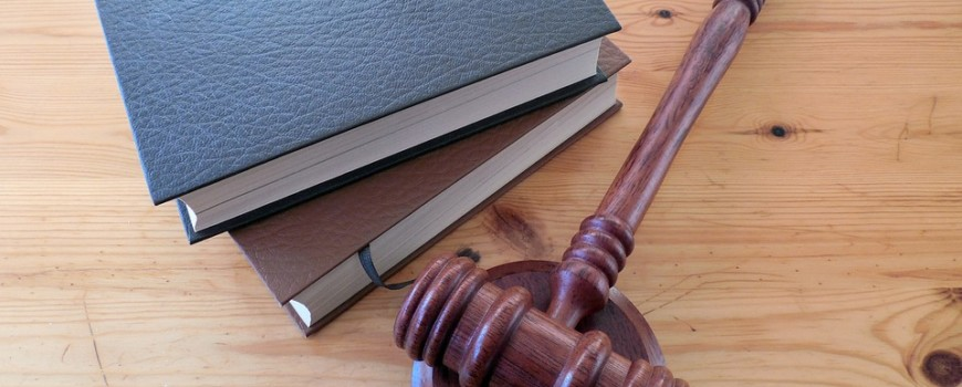 Making Your Family Law Case