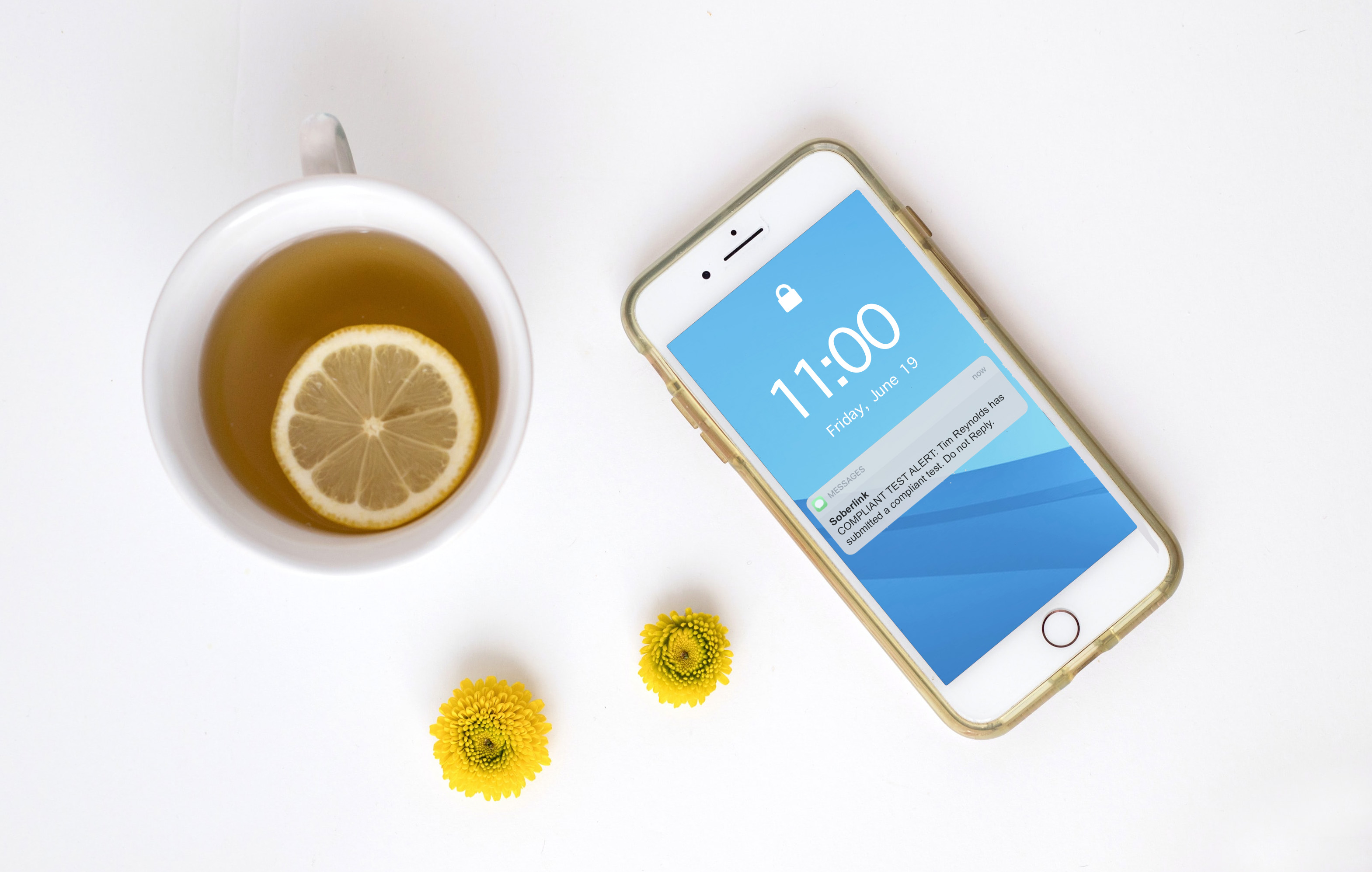 iPhone detailing Soberlink Compliant Test Alert