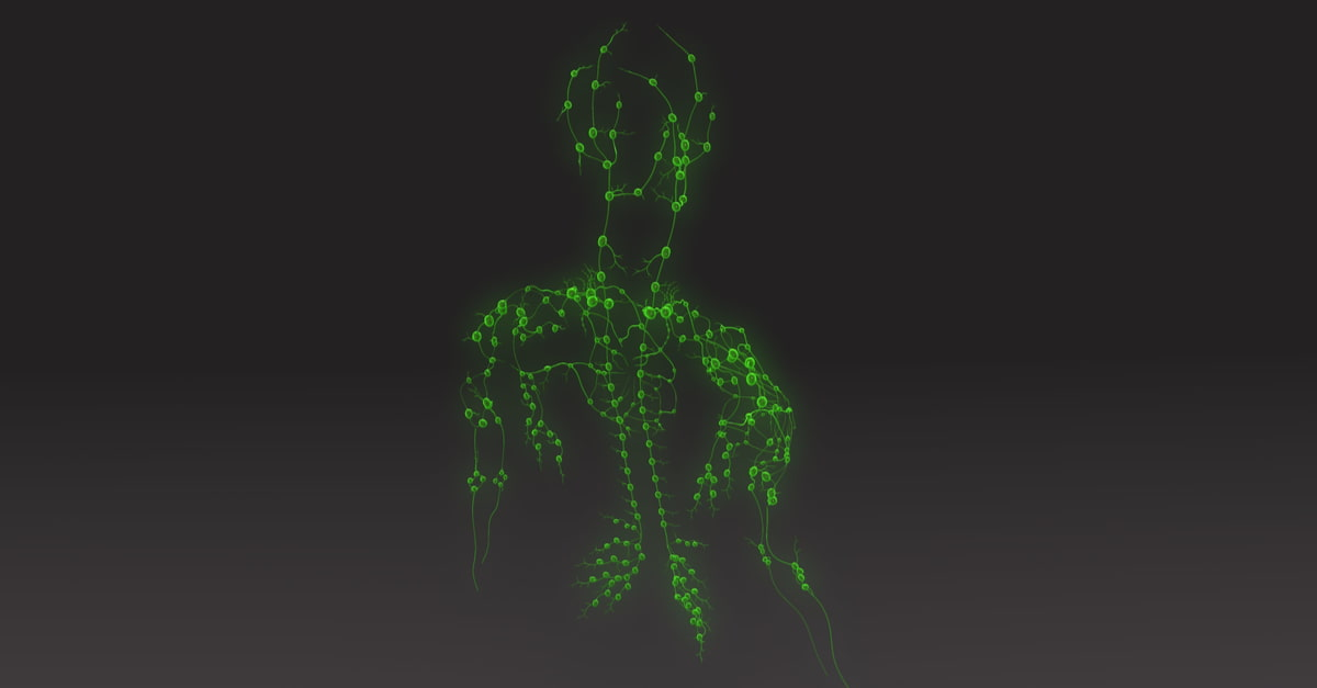 3D image of lymph node which can become swollen and tender due to herpes long term effects