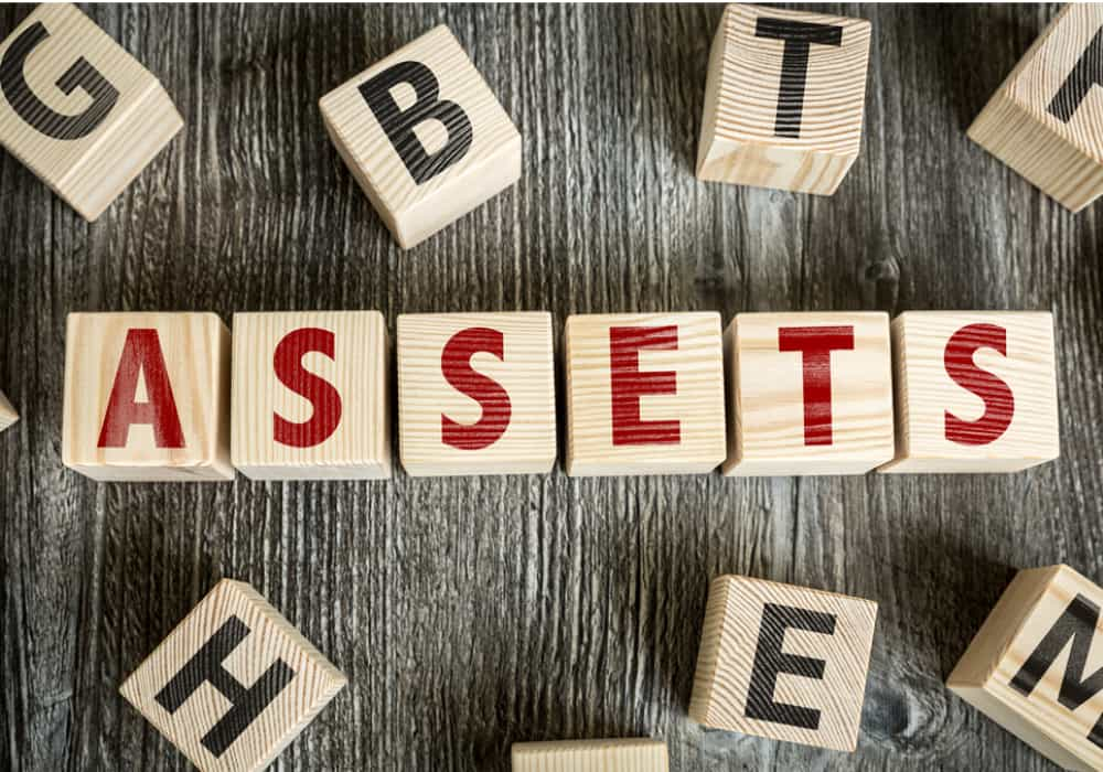 Asset Protection in block letters