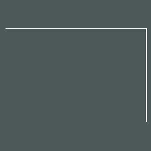Drew Barrymore Logo