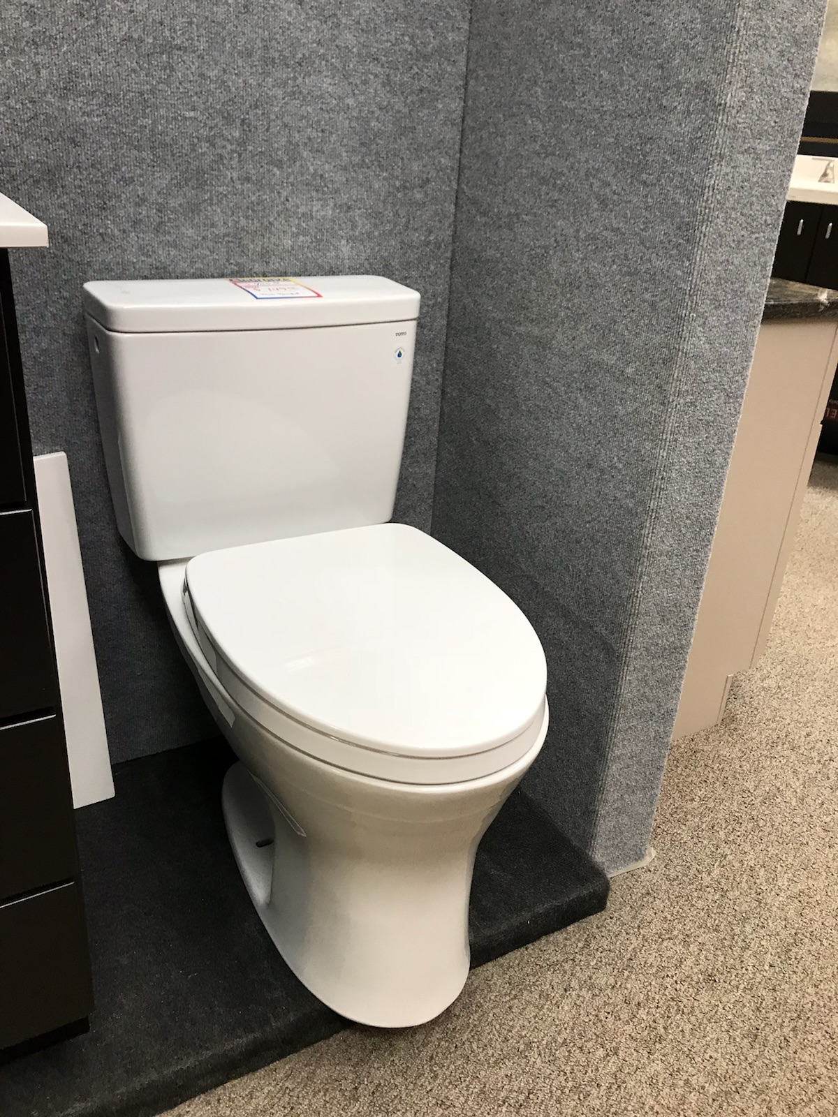 Toto toilet Drake