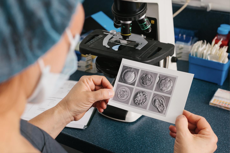 Should I transfer a fresh or frozen embryo?