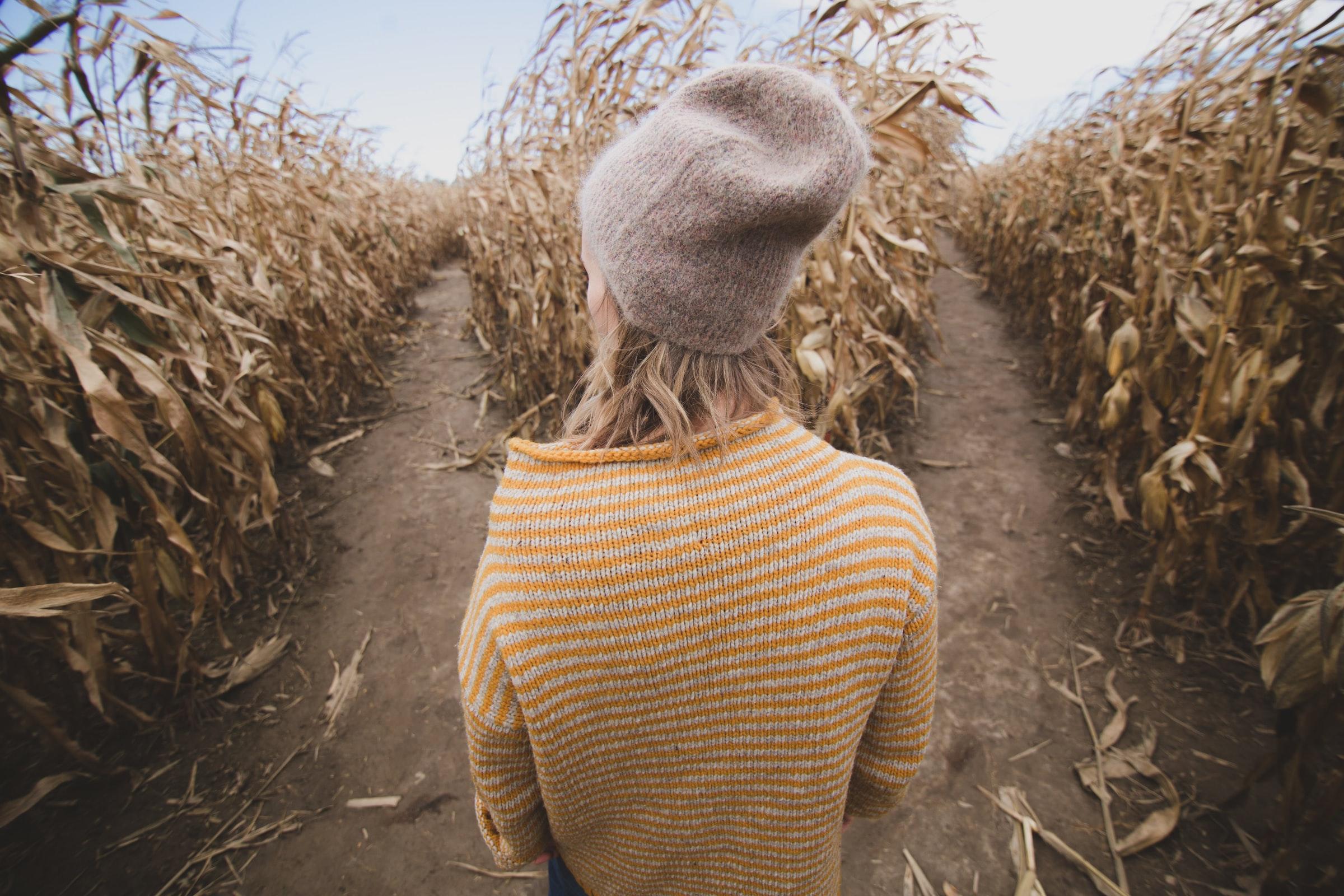 Choosing to do an IUI vs. IVF