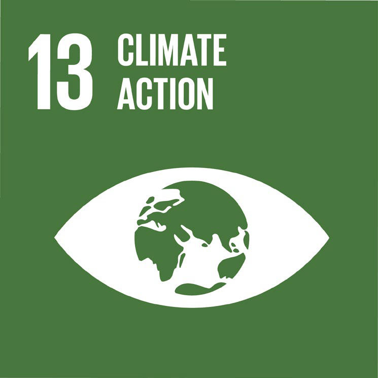 Icon for climate action, a globe in an eye shape.