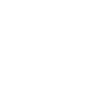 roof inspection icon