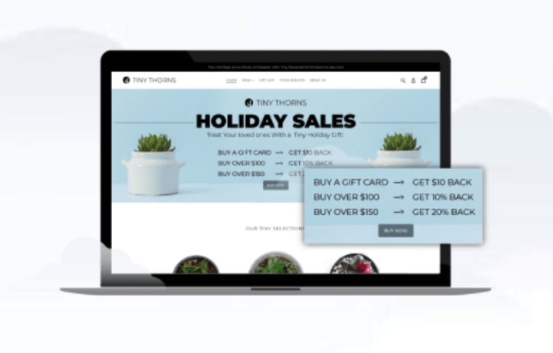 Rise.ai as one of the Best apps for Shopify for loyaltyprograms