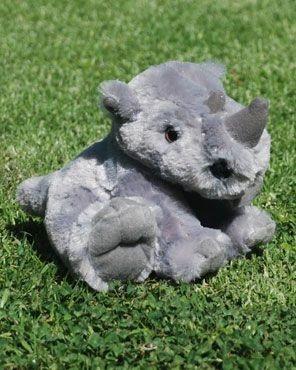 The Plight Of The Rhino