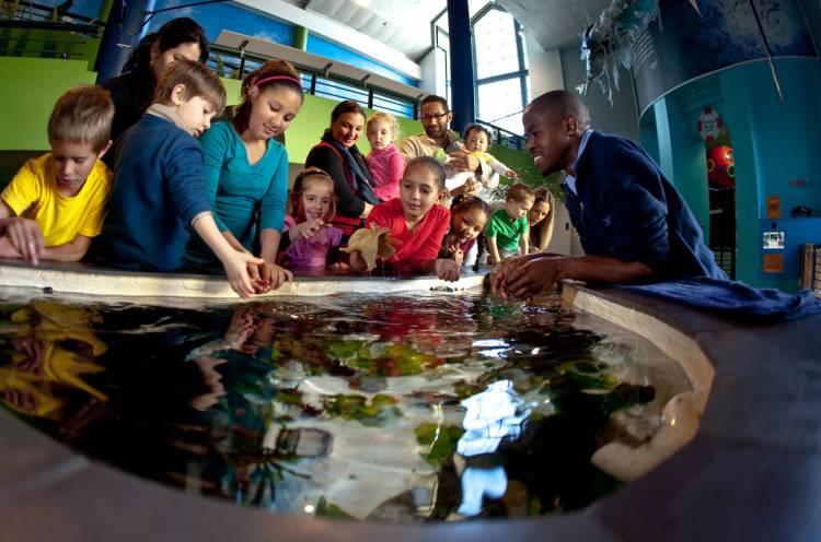 Kids Activities In Cape Town