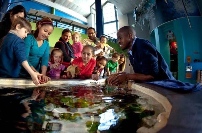 V%26A+Aquarium