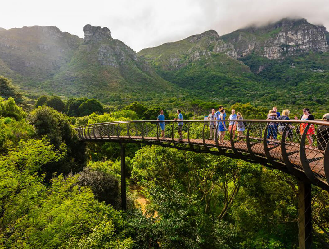 Kirstenbosch National Botanical Gardens