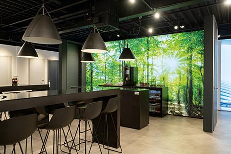 Lichtwand im Showroom mit Waldmotiv