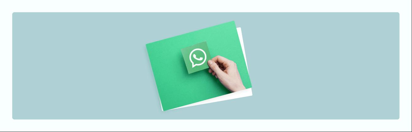 Ist der WhatsApp Newsletter zurück?