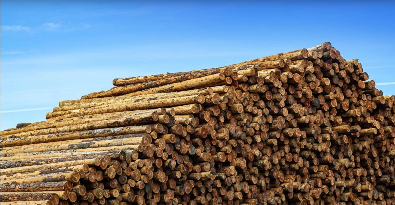 Oregon Lumber Mill Case
