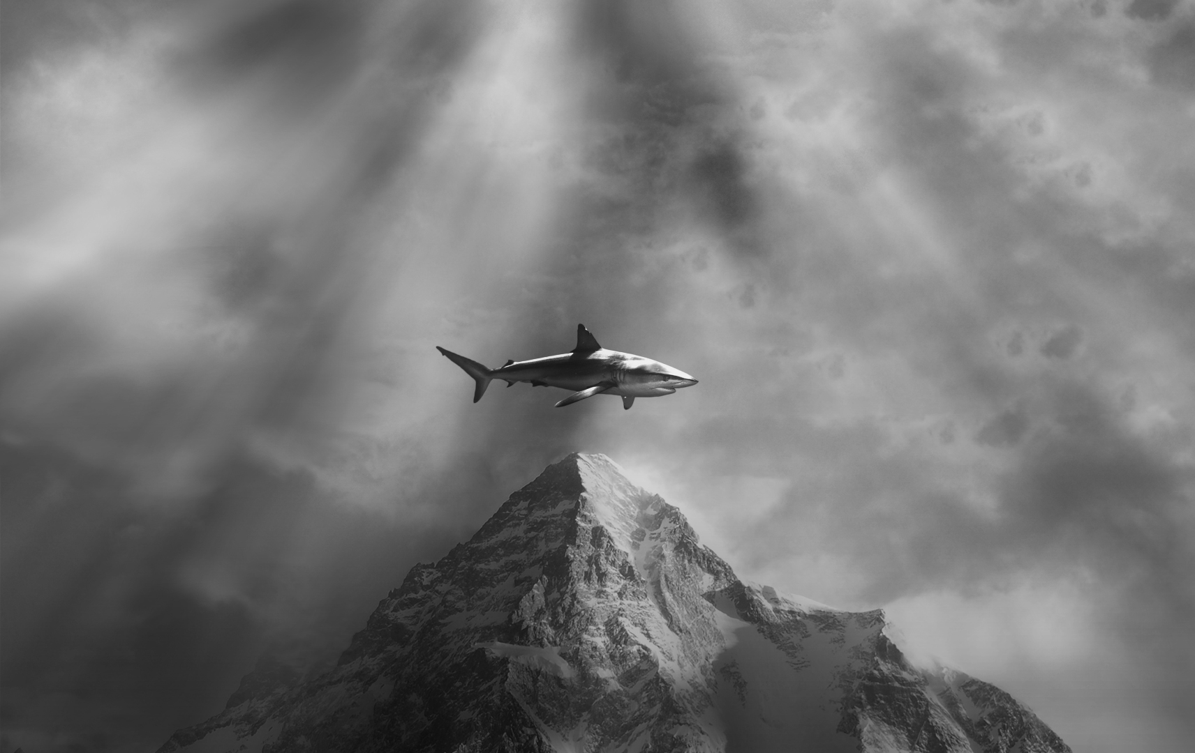 A shark perched on top of a mountain in a surreal photo-composition