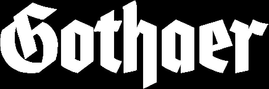 Gothaer logo - A corporate partner of FoundersLane