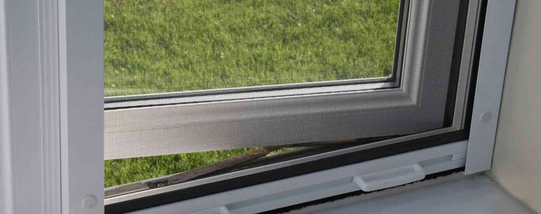 Flyscreen on window