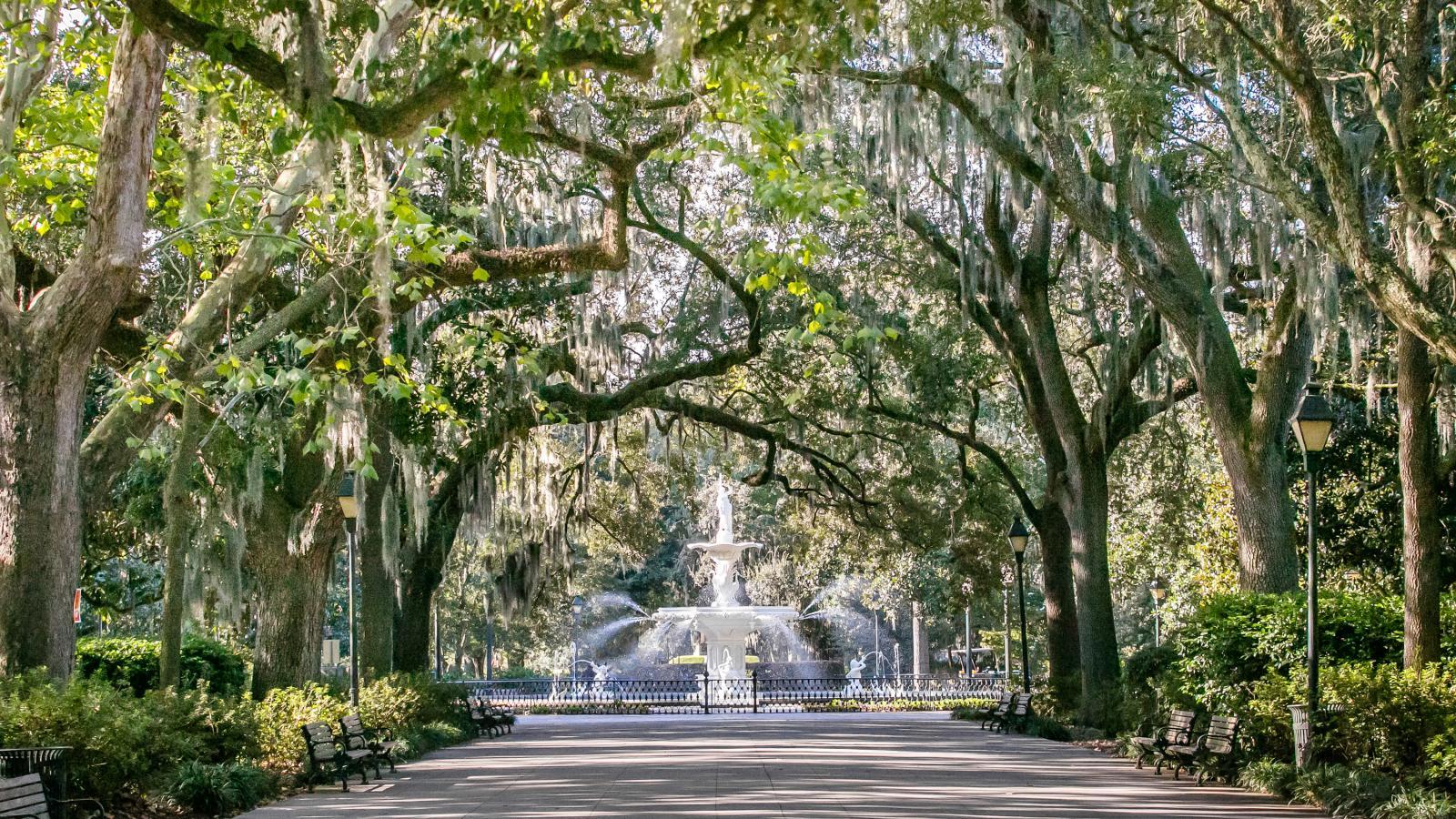 Athens to Savannah, Georgia, Bicycle Tour