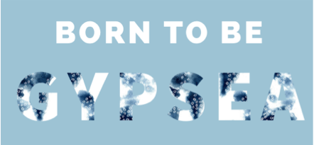 born to be gypsea banner