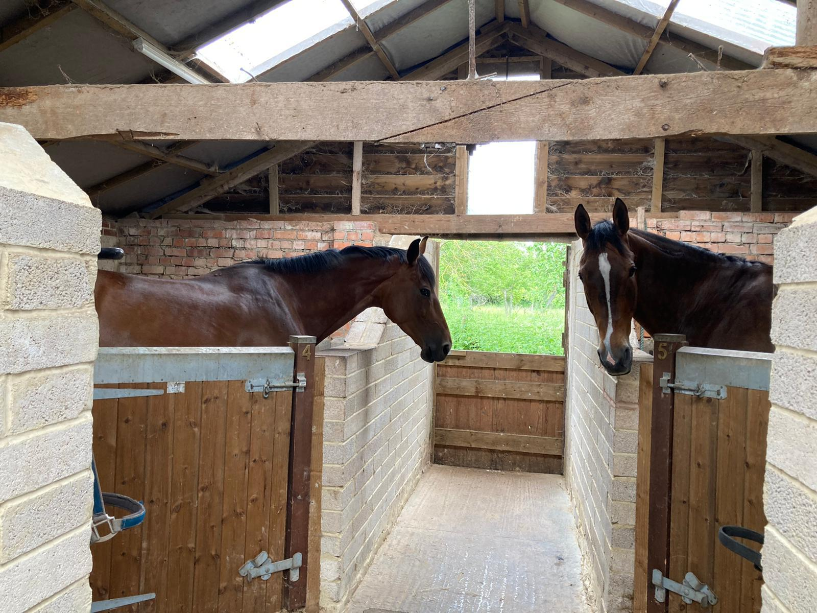 The stables at Gamage Court, home of Jonty Evans