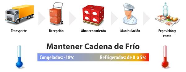 Image result for logistica cadena de frio alimentos