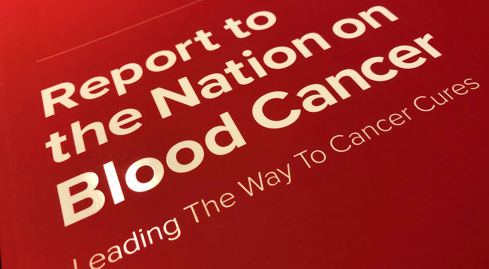 Cover of Leukemia & Lymphoma Society Report to the Nation by 3rd Edge