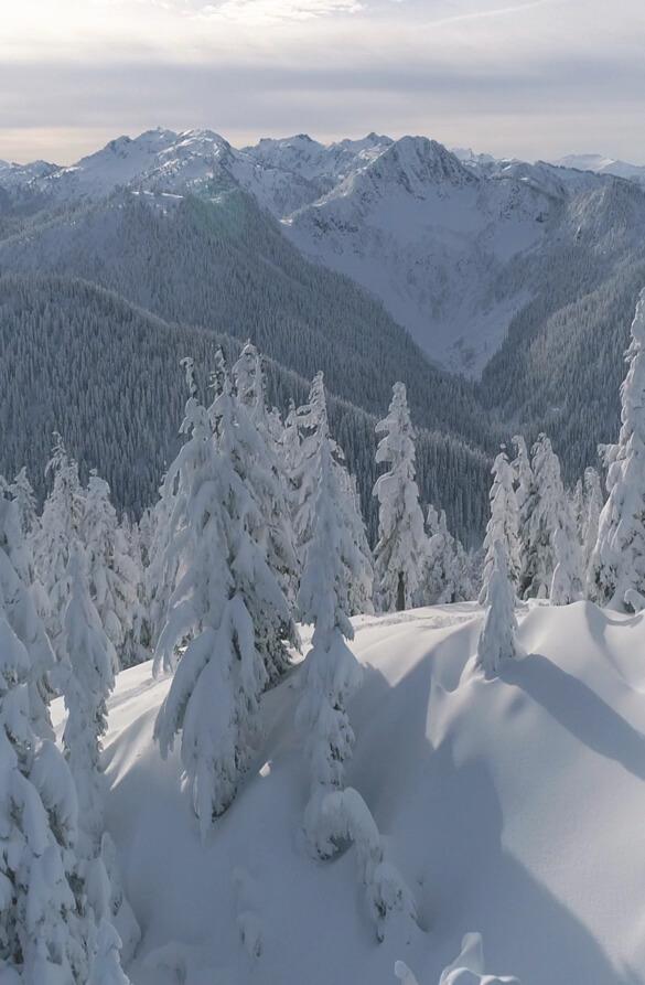 Snow view mountains Reel Aerial