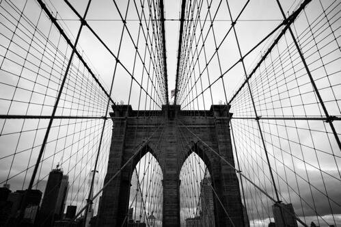 bridge photography pro