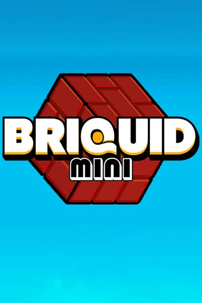 Briquid Mini