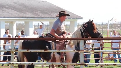 Todd Pierce training a wild horse at Angola State Prison