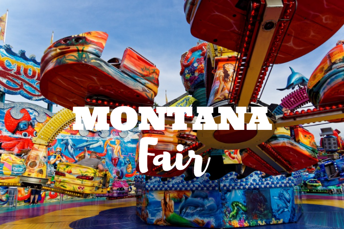 Fun Activities at the Montana State Fair