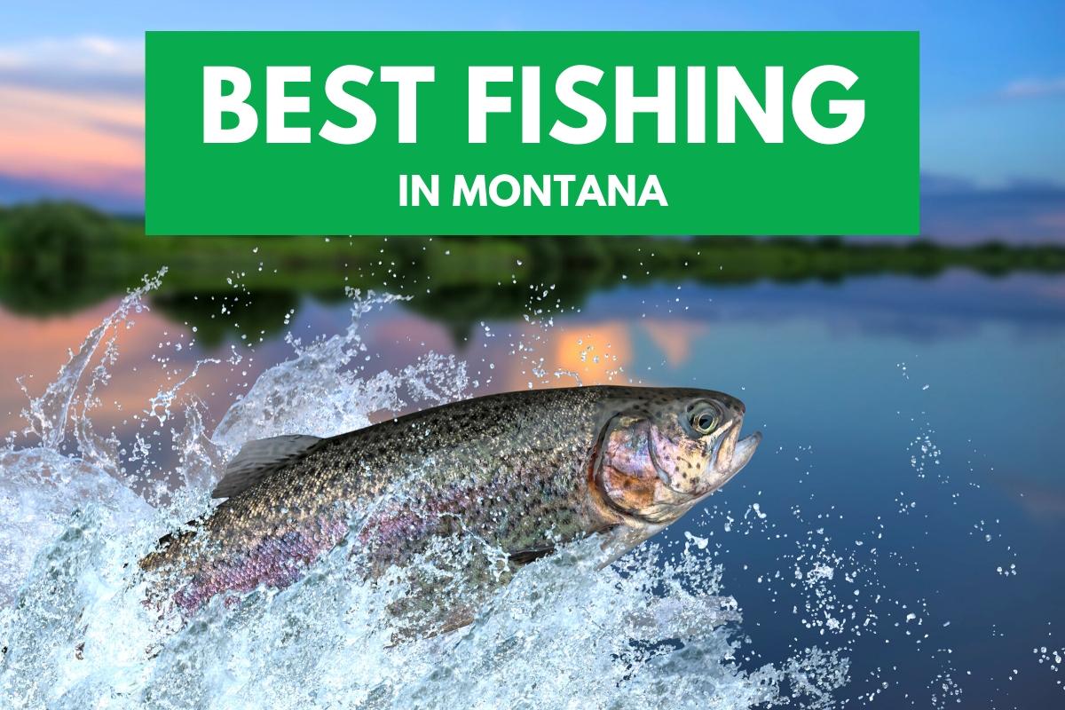 Best Fishing in Montana