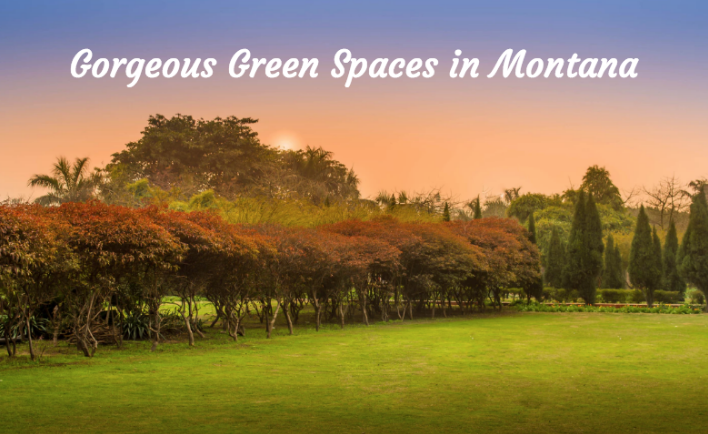 Gorgeous Green Spaces in Montana