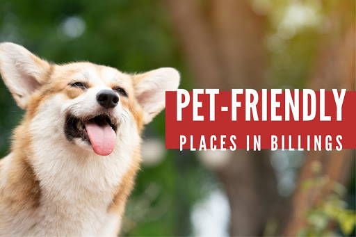 Pet-friendly Places in Billings