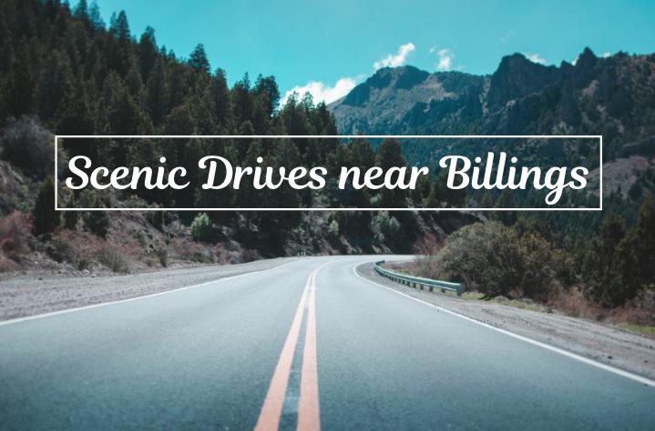 Scenic Drives near Billings
