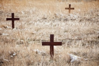 Red crosses in the cemetery
