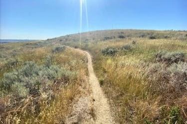 Section of Four Dances Trails
