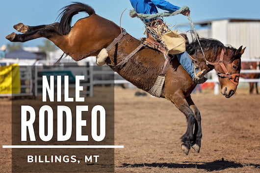 Nile Rodeo Billings, MT - Horse riding
