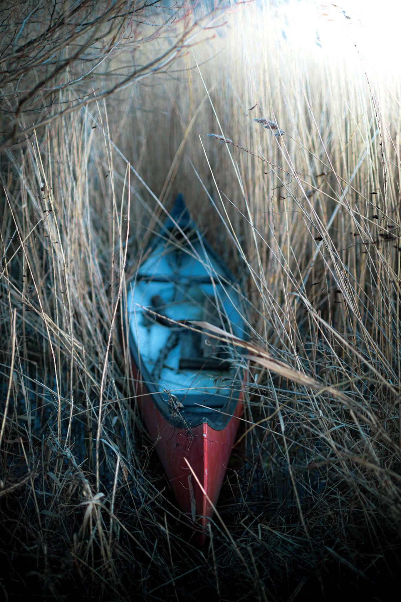 kanot i vassen