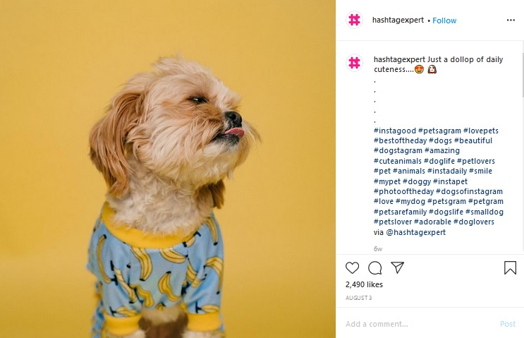 Customize hashtags for targeting your segmented audience like you see Hashtag Expert doing on Instagram.
