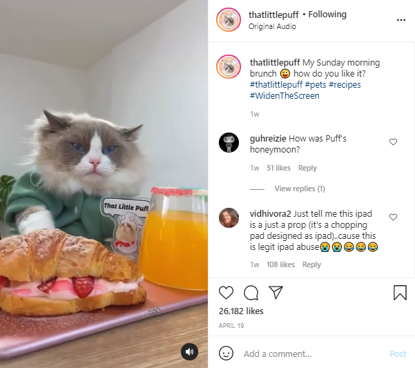 That Little Puff and their branded hashtag on Instagram