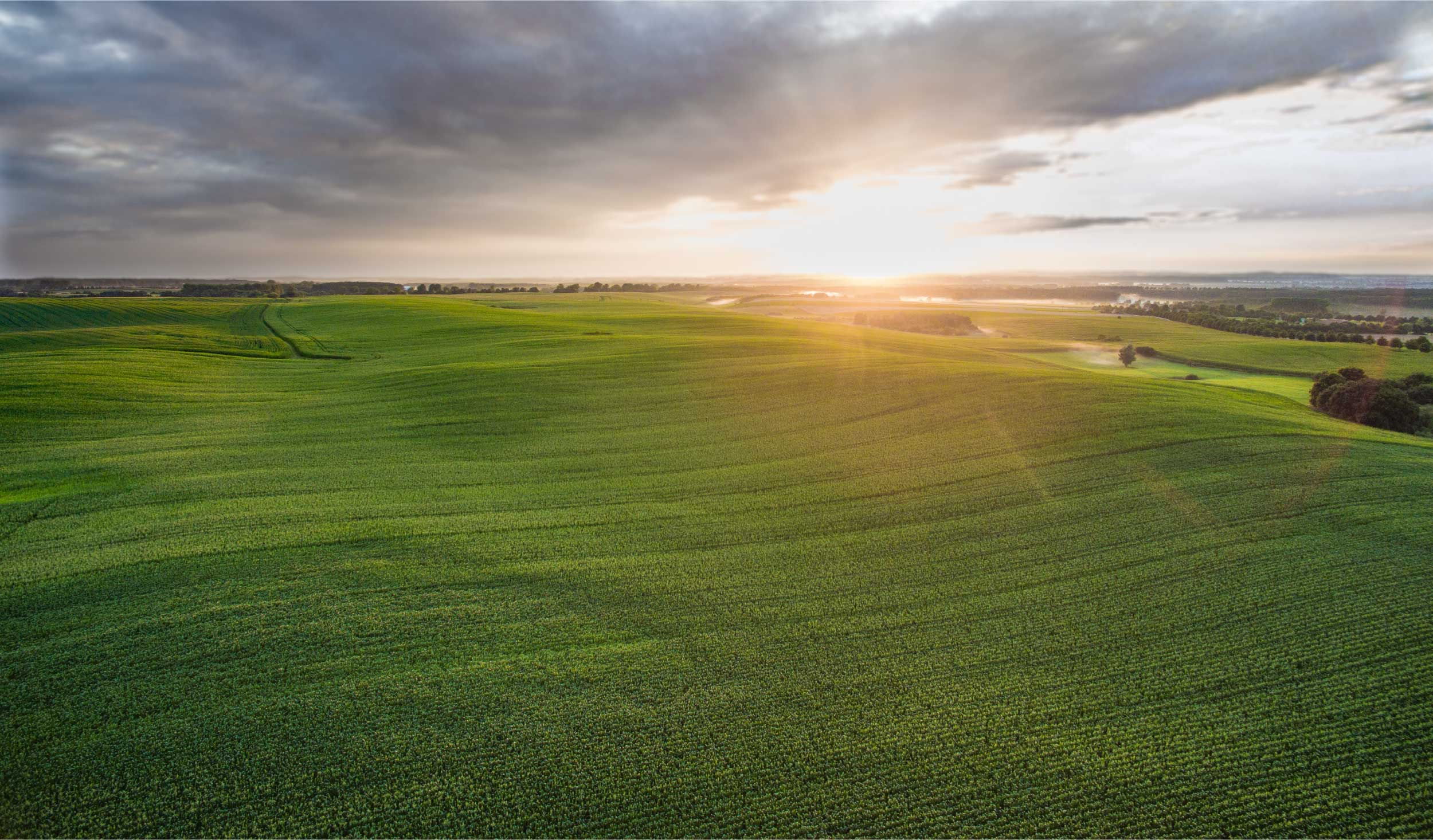 landscape aerial view of a field with the rising sun