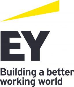 EY Transaction Support logo