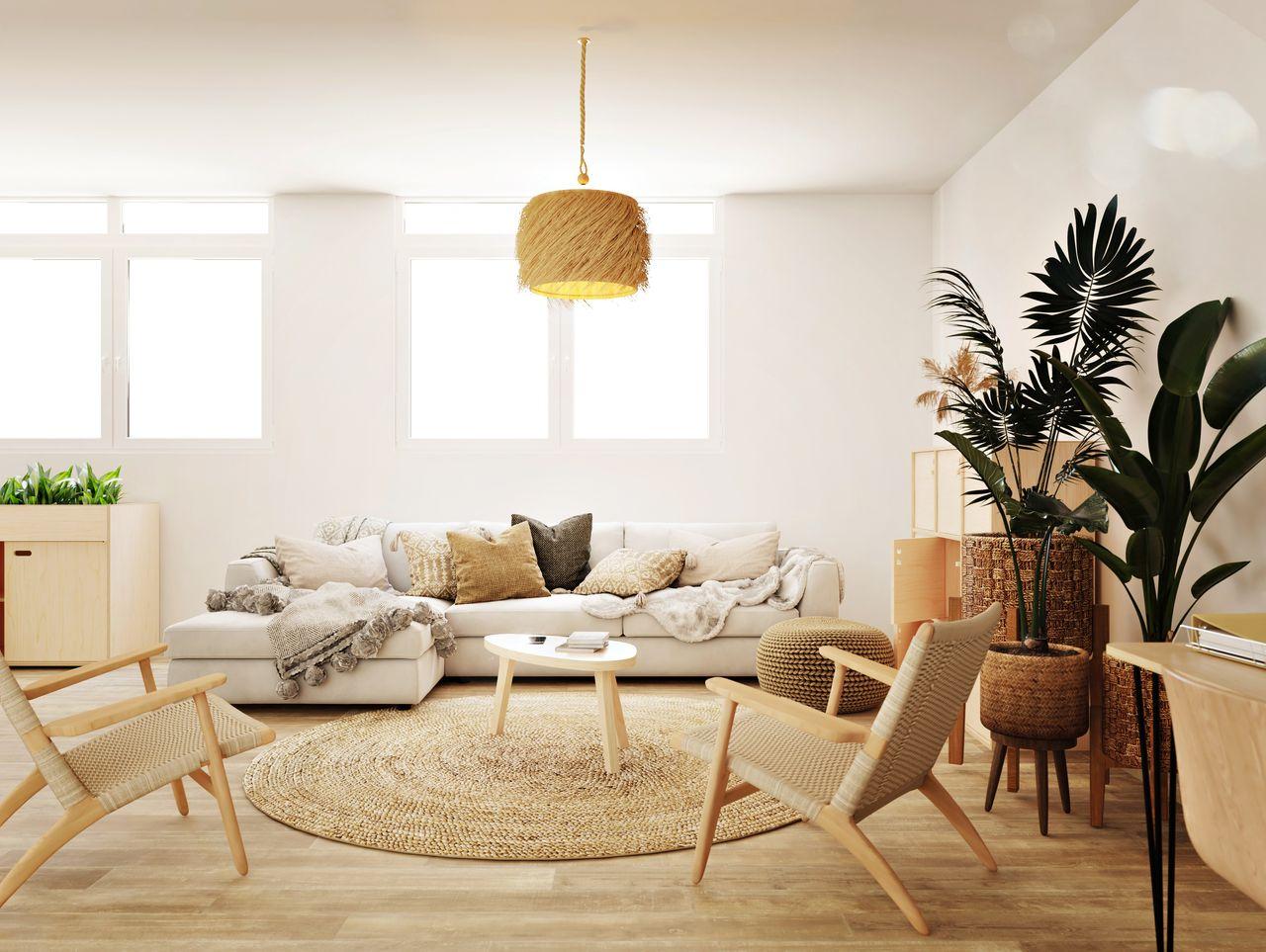 table basse en bois en forme de galet placée devant un canapé, dans une salle de pause informelle à l'ambiance bohème ethnique végétale et moderne