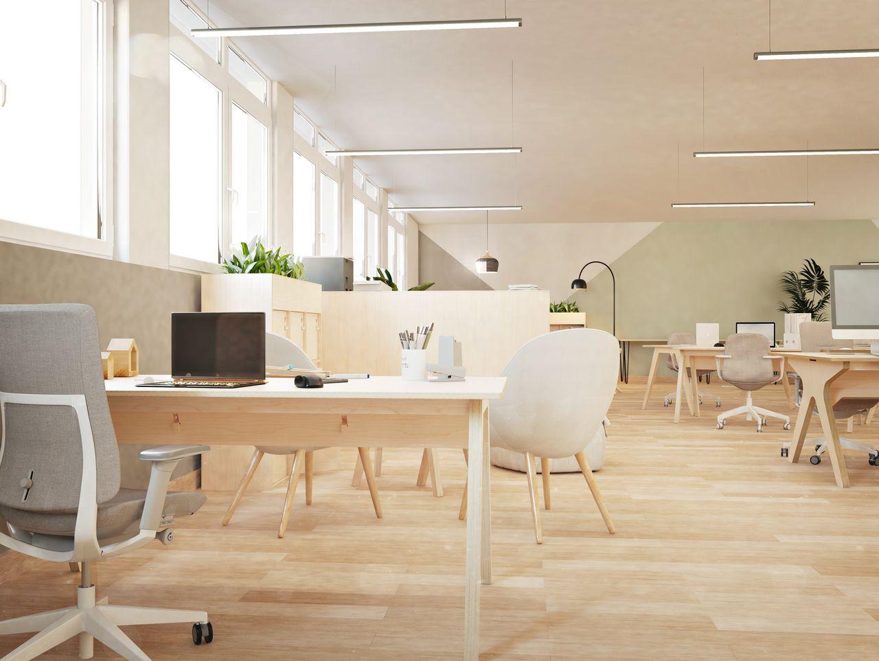 Bureau simple design en bois de bouleau pour travail individuel disposé dans un open space à l'ambiance bohème et ethnique avec des touches végétales