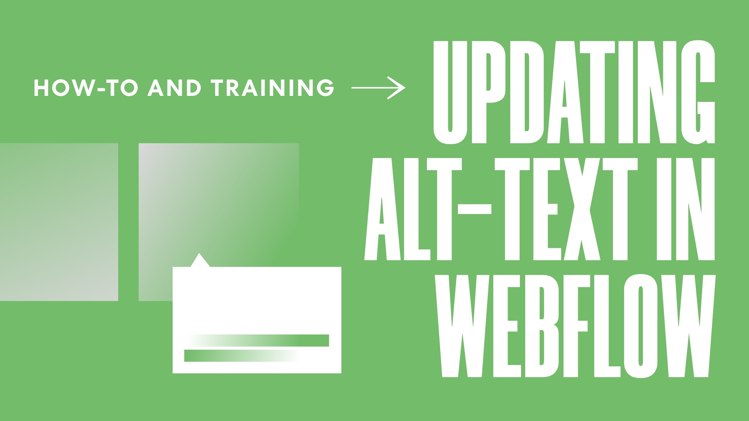 Updating Alt Text in Webflow: How To and Training [ FREE WORKSHEET]