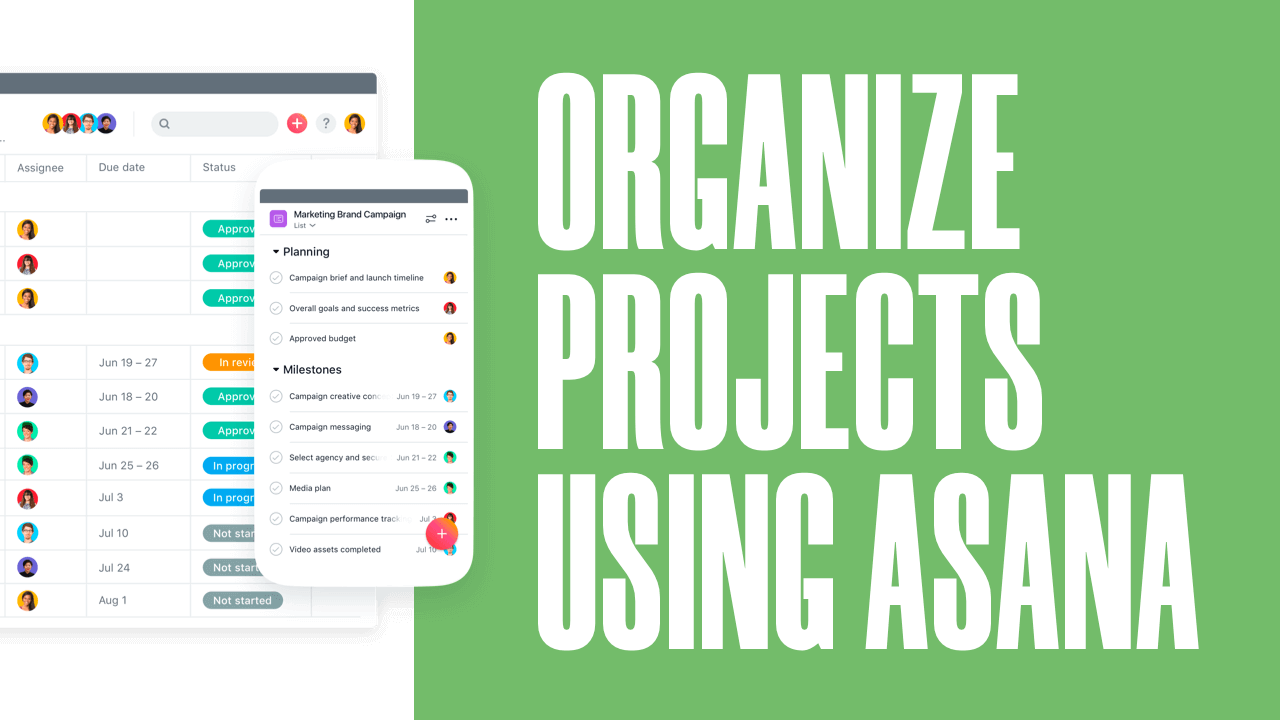 How to Organize Website Design projects for Free Using Asana