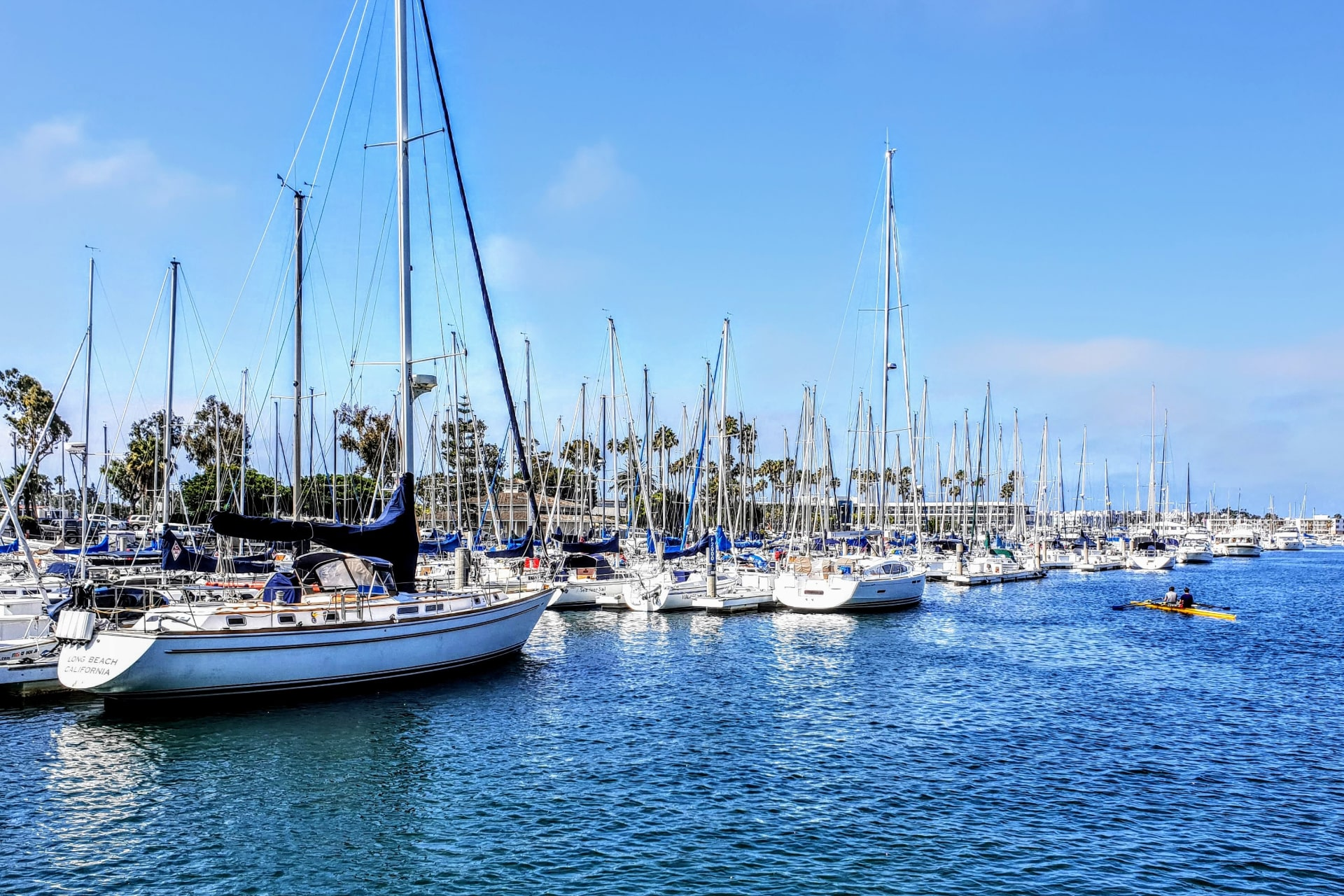 Fresh Off a Big Raise, Genies Moves From Venice to Marina Del Rey