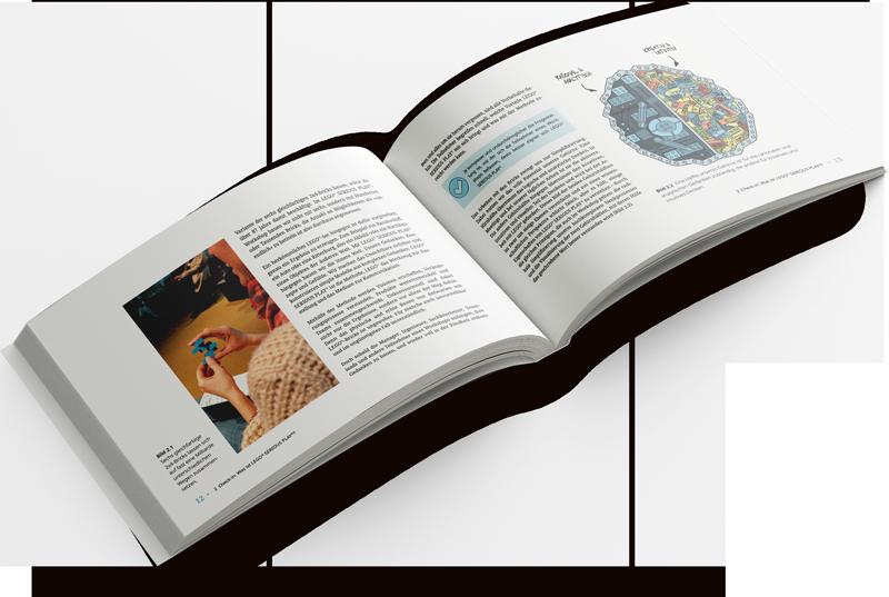 LSP Buch